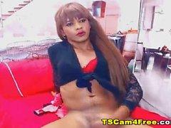 Latina Shemale Babe Masturbating On Webcam