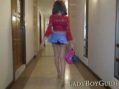 Free Love Expensive Ladyboy