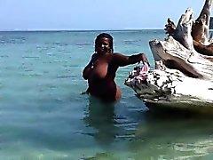 Gato negro gordo desnudo en las aguas poco profundas y juega con h