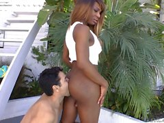 Interracial sex with black Shemale Chasity Michaels