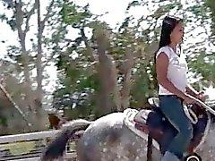Pintainho da Tailândia montando um cavalo