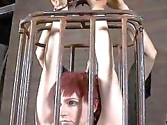 Babes doux mamelons douloureux acquiert torture