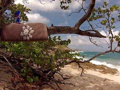 Bir plaj 5. BBC İçin bakıyor