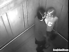 Scopano ferocemente Nell'ascensore viene coinvolto su Cam