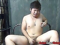 Fett Asia Amateure Spritzt ab