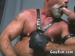 Köseleler ise ile Eşcinsel Motorcu