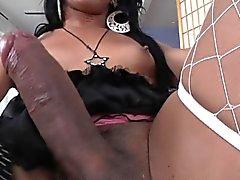 Black tranny tgirl in lingerie wanks her cock