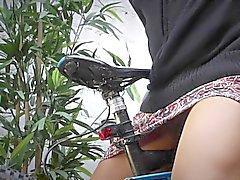 Bisiklet Horny