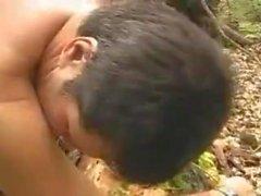 Ormanda ayı sexi