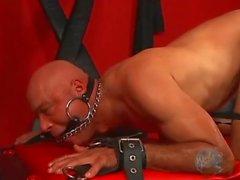 tie me up tie me down