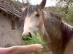 Große Bodied Farm Girl