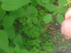 Natur abspritzen