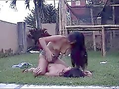 Thai Cat Fight