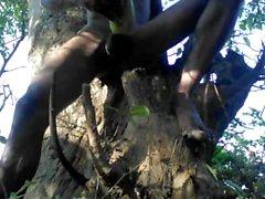 Tarzans Kille kön In The skogen Wood