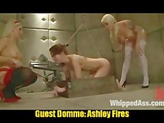 Lorelei Dominates 6 Worthless Putas