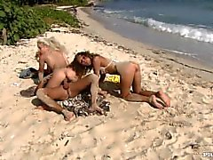 Lauren May ve Nesty Onların Twat bir alet ederken Sahil keyfini çıkarın