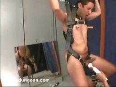 Aufgehängt und gemolken