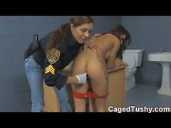 девочка арестован в целях проституции