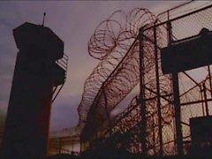 diablos gaymainstream de prisión en confinamiento