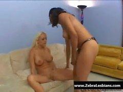 Zebra Girls - Ebony lesbian babes enjoy deep strap-on fuck 15
