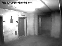Asansör sapığı ! !