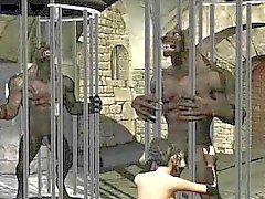 Brunette de dibujos animados en 3D deliciosas chupa en un gallo werewolfs