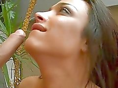 Busty tranny Monique gets her ass rammed in doggystyle
