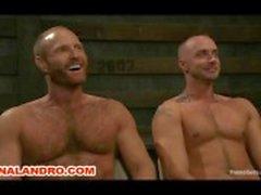 Homos en cuir Scènes les plus populaires