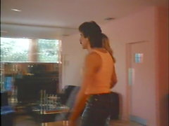 miami spice 2 (1988)
