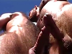 HAIRY HOTTIE muntliga SEX PÅ STRANDEN